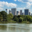 Central Park Lake  in  Manhattan, New York — 图库照片