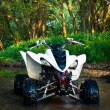 Stock Photo: ATV in water