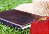 Apple book and hat outside on grass — Stock Photo
