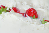 Fresh strawberries falling into the milk with a splash — Stock Photo