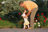 Father teaches herl little daughter to walk on the background of rose bushes — Stockfoto