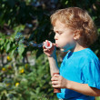 Stock Photo: Young boy blowing a bubbles on a sunny day