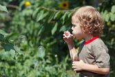 Young cute boy blowing a bubbles on a sunny day — Stock Photo