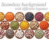 Seamless texture with legumes on white — Stock Photo