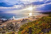 Paisaje costero en córcega, francia, europa. — Foto de Stock
