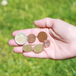 Female hands opened with euro coins — Stock Photo