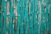 Pattern of faded green bamboo fence — Stock Photo