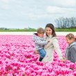 Royalty-Free Stock Photo: Mother with her child in tulips field