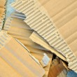 Stock Photo: Torn cardboard