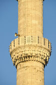 Mosque and minaret — Stock Photo