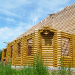 Stock Photo: Rebirth of temple Kazanskoy icons Bozhiey full-grown in village Naleskino