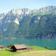 The Walensee in the canton of Graubuenden, Switzerland — Stock Photo