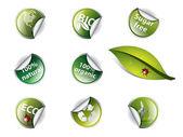 Bio eco e adesivos — Vetor de Stock
