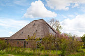 Typical Dutch farm house — Stock Photo