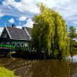 Traditional Dutch house — Stock Photo #11132365