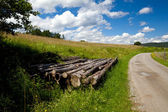 Rural road in mountains — Stock Photo