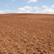 Tilled — Stock Photo