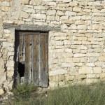 Old wooden door — Stock Photo #11238162