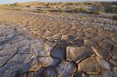 Landscape with cracked mud in Spain — Stock Photo