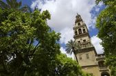 Mosque in Cordoba — Stock Photo