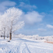 Winter landscape with tree and road - Stock Photo
