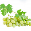 Green grapes with leaves — 图库照片