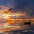 Landscape with boat and birds — Stock Photo