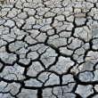 Stock Photo: Dry earth