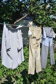 Washed garment — Stock Photo