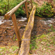 Rustic Footbridge over a mountain stream — Stock Photo