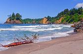 California coastal beach in Summer — Stockfoto