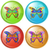 Butterfly, button — Stock Photo