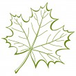 Royalty-Free Stock Vector Image: Leaf of a maple, vector