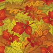 Leaves of plants, seamless, autumn — Vector de stock #12014509