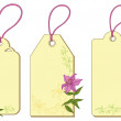 Stock Photo: Tags with floral pattern