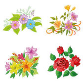 Cultivated flowers, set — Stock Photo