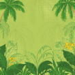 Tropical floral background — Stock Photo