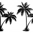 Palm trees, black silhouettes — Stock Photo