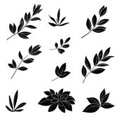 Leaves, black silhouettes — Stock Vector