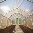 Foto Stock: Empty small greenhouse