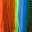 Stock Photo: Colorful shoe laces