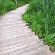 Old planked footway — Stock Photo #11255927