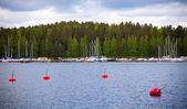 Yachts moorings buoys in small European marina — Stock Photo