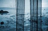 Fragment of a fishing net above coastal sea landscape — Stock Photo