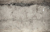 Old weathered concrete wall texture — Stock Photo