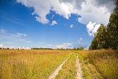 Paesaggio rurale russo con strada sterrata lungo il campo — Foto Stock