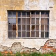 Old facade and window — Stock Photo