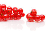 Red currant close-up on a white background — Stock Photo