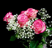 Ramo de rosas sobre un fondo negro — Foto de Stock