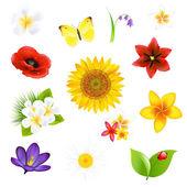 Grandes flores y hojas de set — Vector de stock